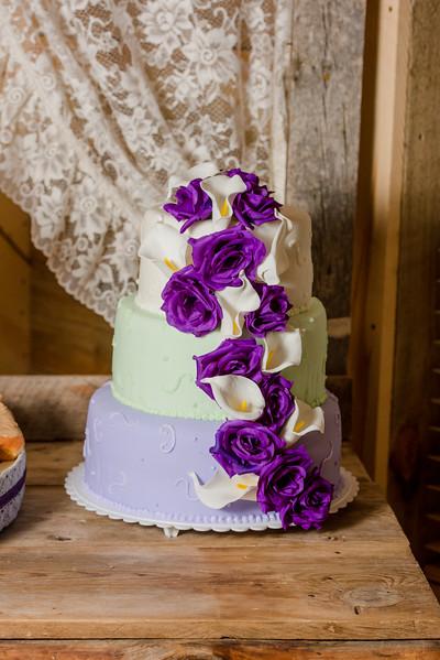 2017-05-19 - Weddings - Sara and Cale 5438.jpg
