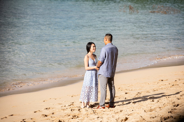 Tonys amazing hawaii Proposal