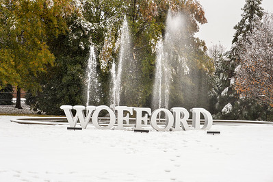 Wofford Sign Snow