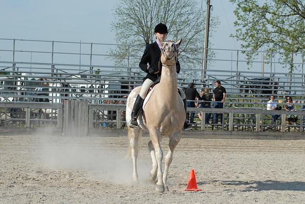 Classes 33 & 34 Hunt Seat Equitation