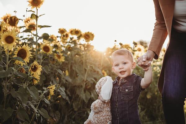 Kirsten sunflowers