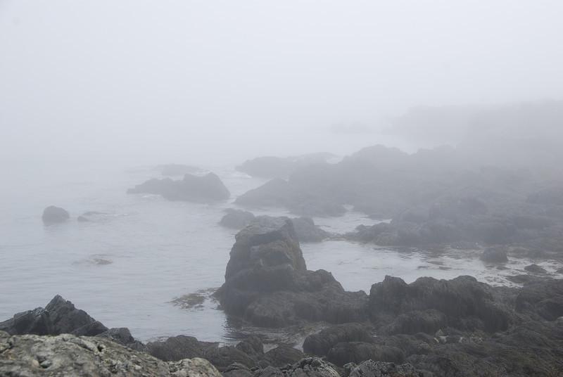 Whitehead Island - 1