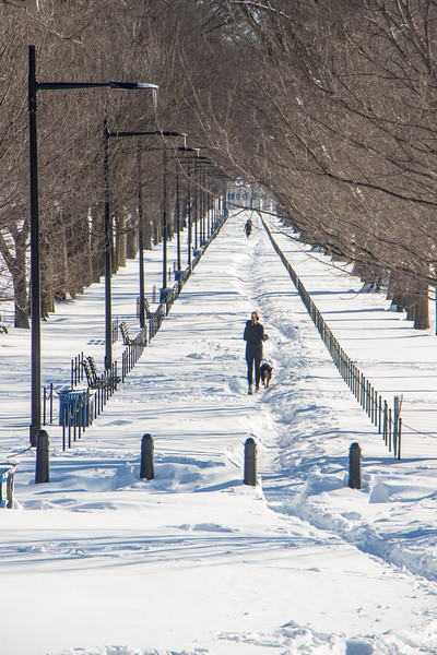 Jan. 24th - Path along Reflecting Pool