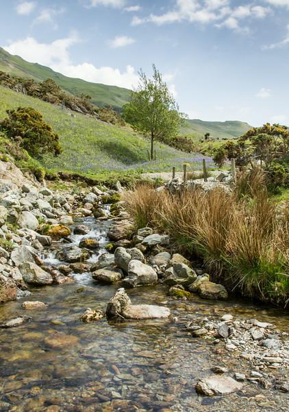 Rannerdale Stream 2