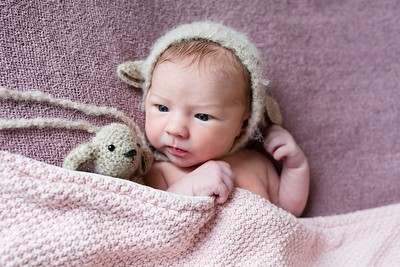 Newbornshoot Voorthuizen