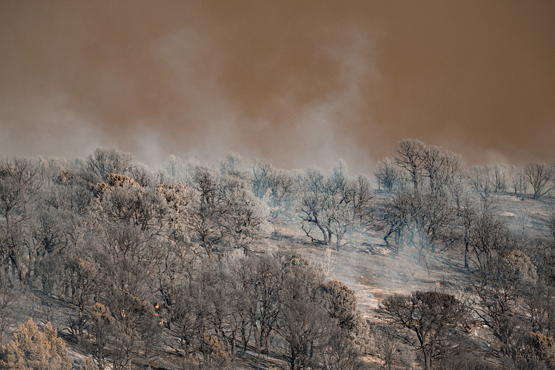 Dollar Ridge Fire July 2-6.jpg