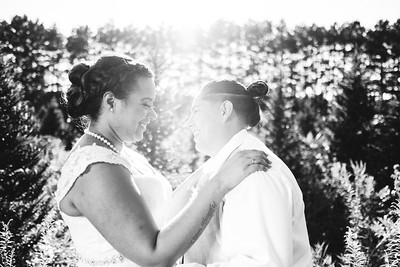 Jasmine & Griselda | Williams Tree Farm