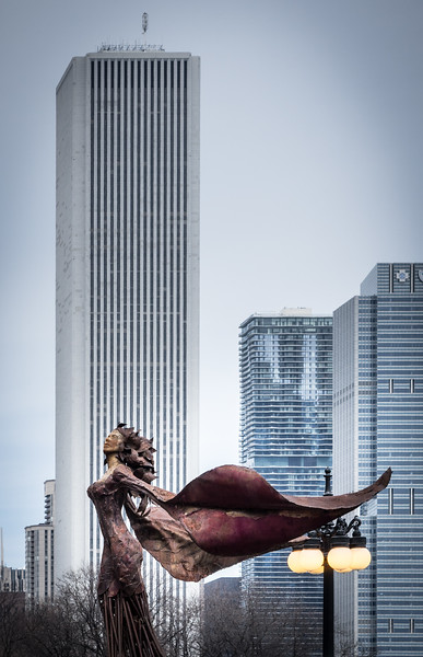 Chicago ASRA-20140402-13_23_50-Rajnish Gupta-3.jpg