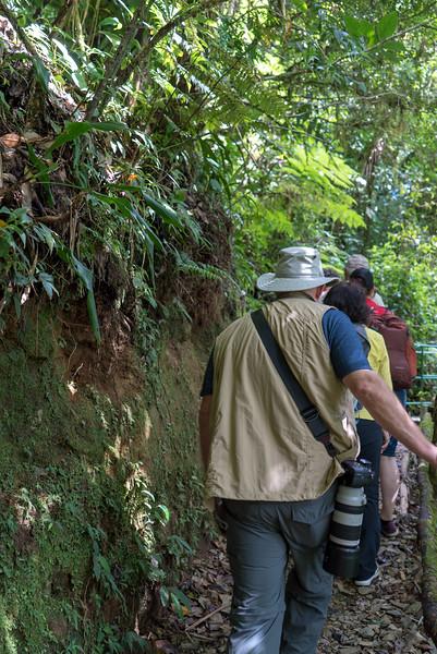 Costa Rica 2015-4092.jpg