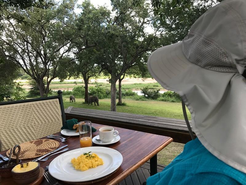 Wildlife over breakfast - Dan Poag