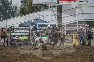 Payette Co Pro Rodeo 2018 - Saturday