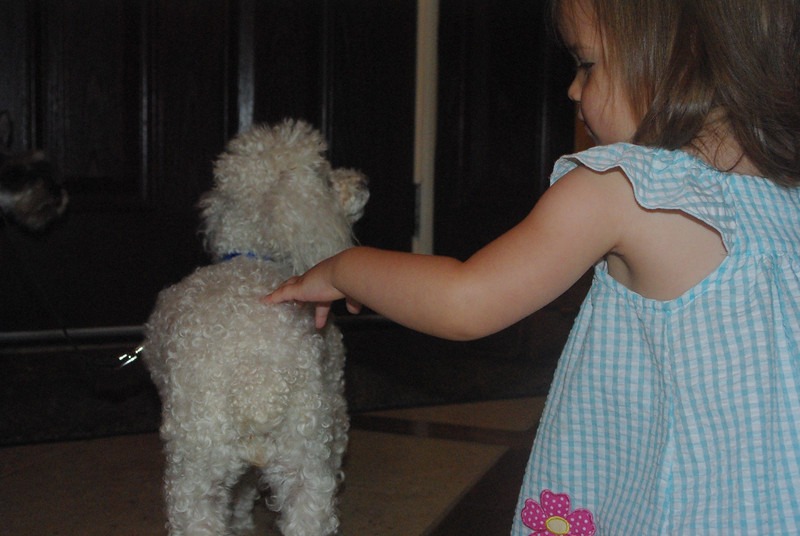 Isabel with Noodle: Nana and Papa's poodle