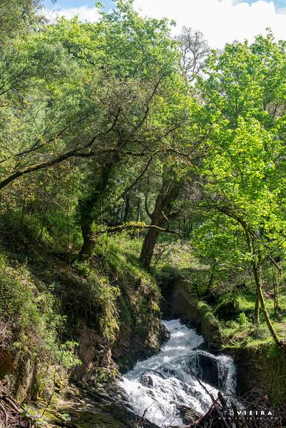 PR2 Cabreia e Minas do Braçal