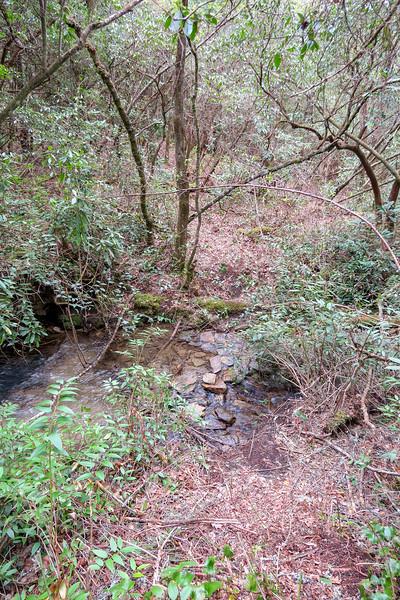 Interim Access Trail @ Big Branch -- 2,530'