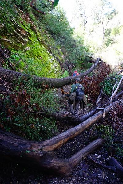 20160218066-Gabrielino Trail Scouting.JPG