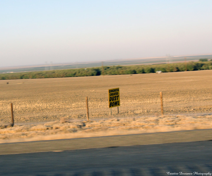 """The sign says....   """"Congress created DUST BOWL""""  These signs are up and down the 5 freeway in California. So many farmers up the 5, through the center of California, have left their land or are not planting crops because of the water issues. It's very sad."""