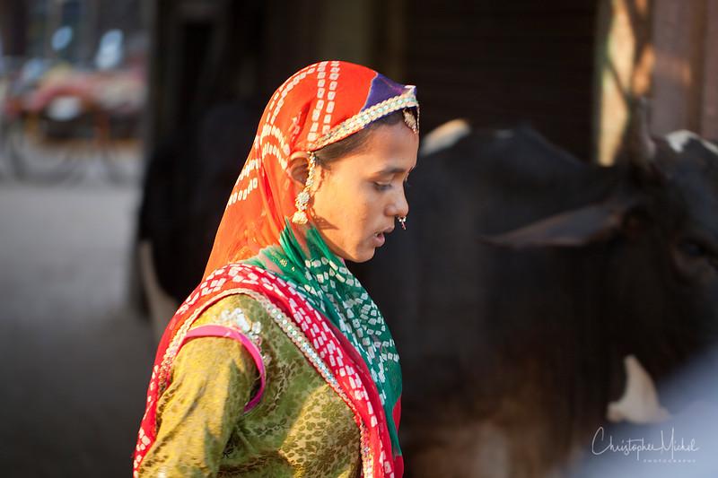 20111110_Jodhpur_8145.jpg