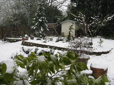Late snowfall