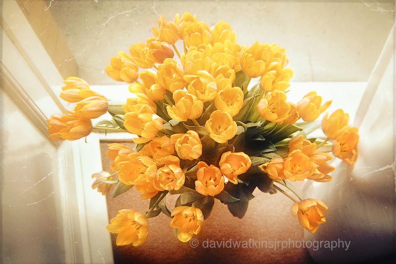 Princess Irene bouquet.jpg