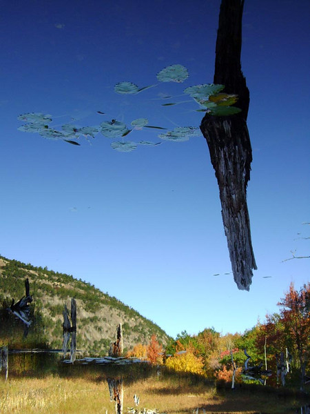 UFO OVER ACADIA The Tarn, Acadia National Park, Maine  What the . . . ? What kind of alien spacecraft is that in the sky over Hugenot Head? And its sister ships are already landing. Very peculiar. Actually, this is an optical illusion, as the photo is turned upside down. The water is so clear and still, that it looks real, though. Pretty good, huh?