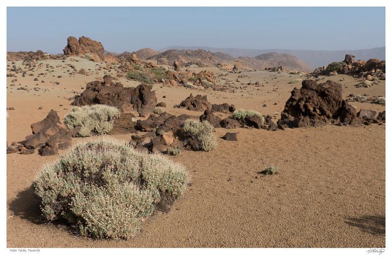 141103-P1060190 Near Teide.jpg