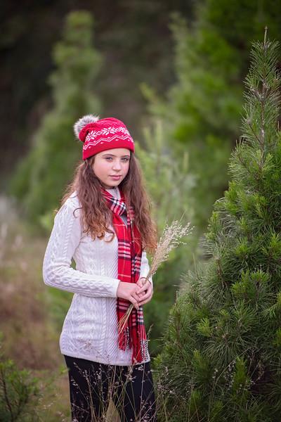 Tree Farm Nov 2020 - Devesa