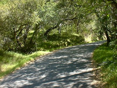 Monterey Area Bicycle Ride