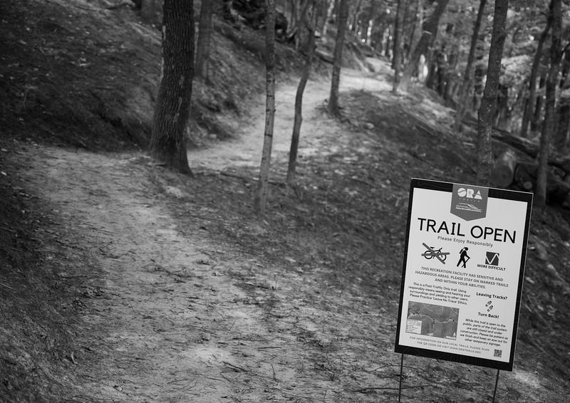 08-04-2020-trail-24.jpg