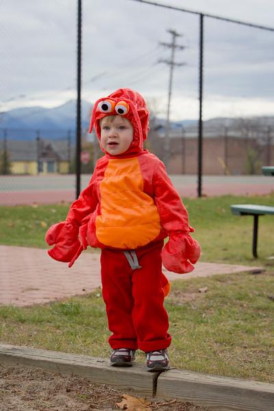 Wyatt's First Halloween 247.jpg