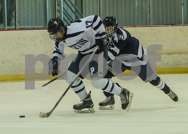 Princeton vs Notre Dame 021318 All Action