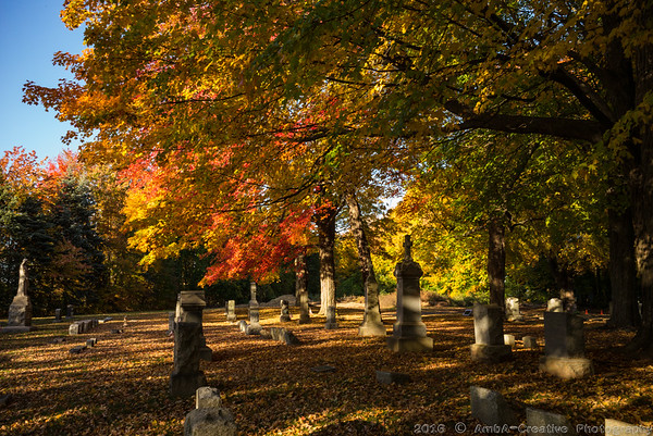 Fall Colors @ Meriden CT