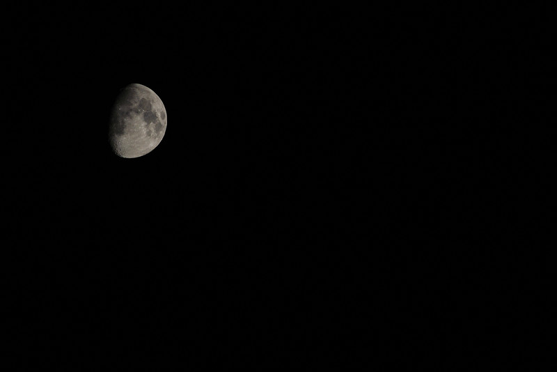 The man in the moon.