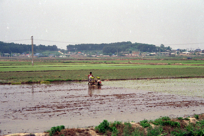 1992 06 01 - 1st Days on Kunsan AB 06.jpg