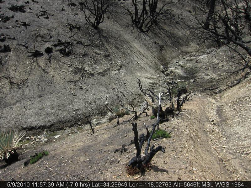 072-Vetter mtn Trail.JPG