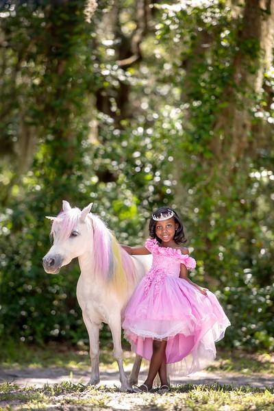 Unicorns June 2020 - Nibbs