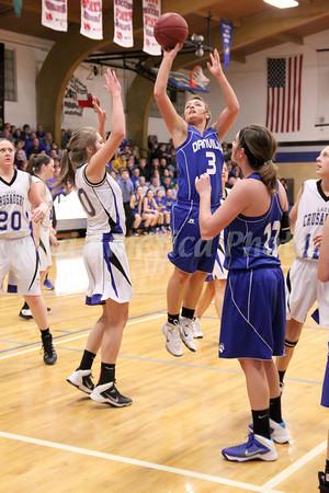 Girls Basketball, Danville vs Holy Trinity 1/24/2014