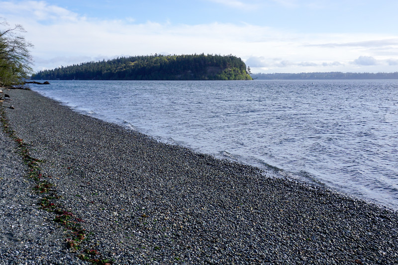 The dreaded beach stop on near the Hood Canal Bridge where Poppy bolted and rolled in dead stink   D: