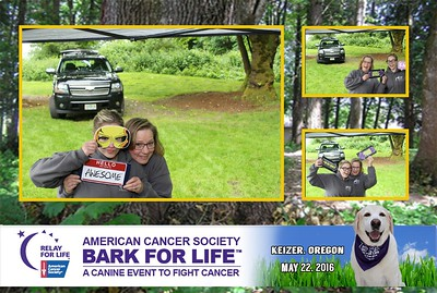 Bark For Life May 2016