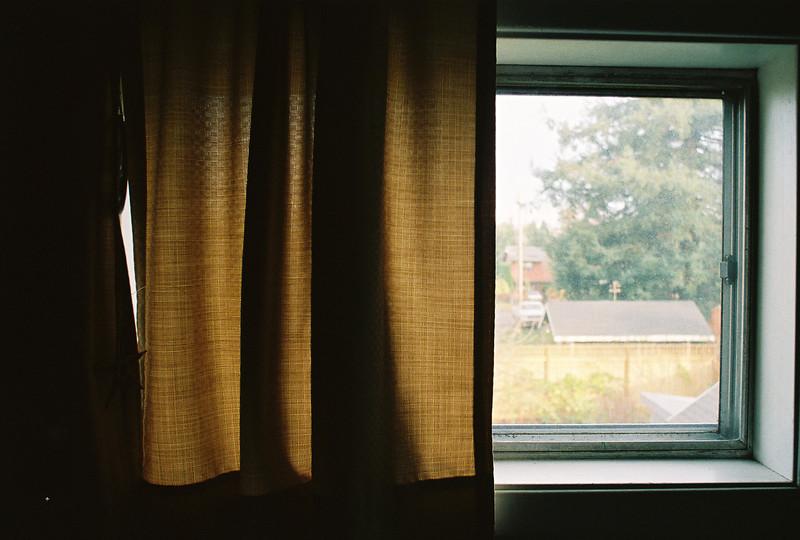 bathroom window.jpg