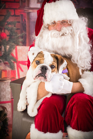 2018 Santa Pictures and Charity Dog Wash