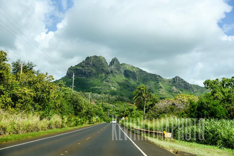 Kauai2017-226.jpg