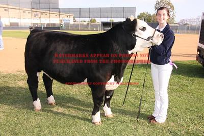 2010 LHVCF Beef