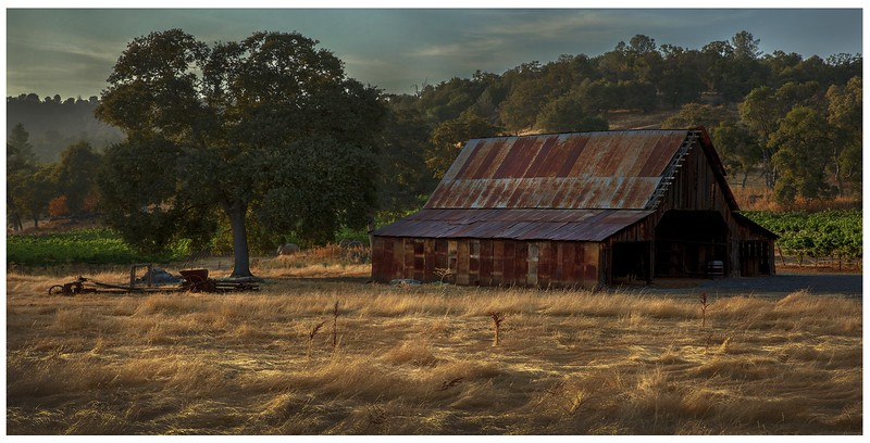106.Scott Carter.1.Foothills Barn in Evening Sun.jpg