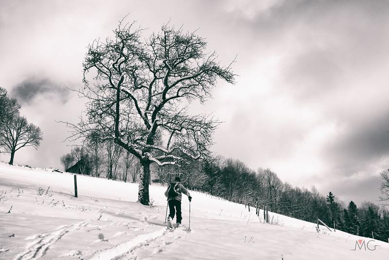 Skitour-Kirchenberg-11.jpg