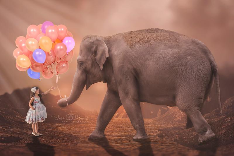 emi_elephant2.jpg