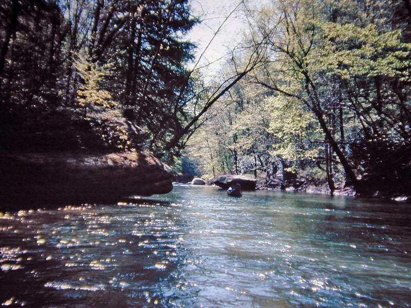 Jellico Creek near the Cumberland River