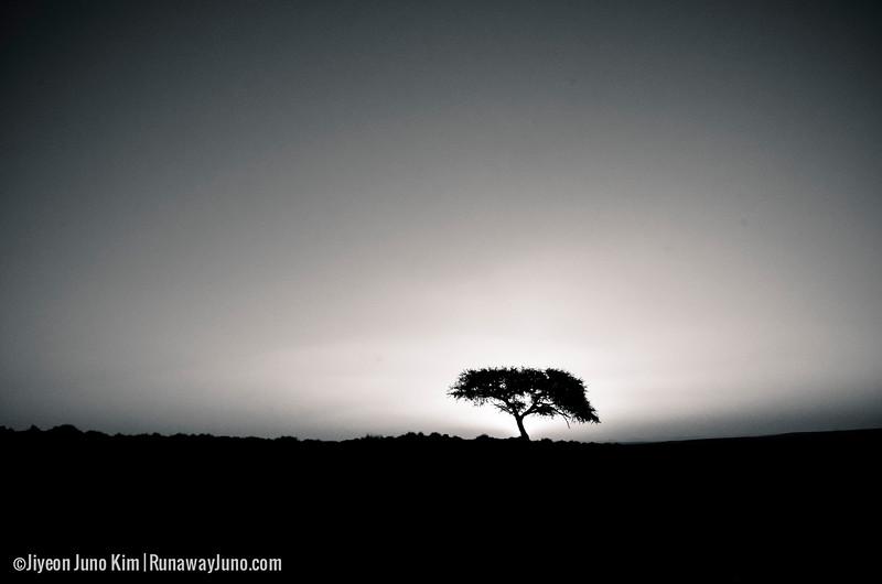 Namibia-4241.jpg