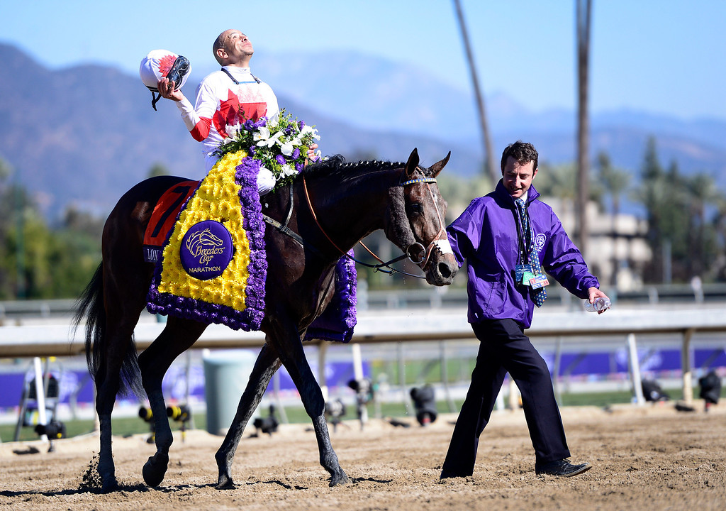 . Mike Smith celebrates winning the Breeders\' Cup Marathon with London Bridge at the Breeders\' Cup at Santa Anita Park in Arcadia Friday, November 1, 2013. (Photo by Sarah Reingewirtz/Pasadena Star-News)