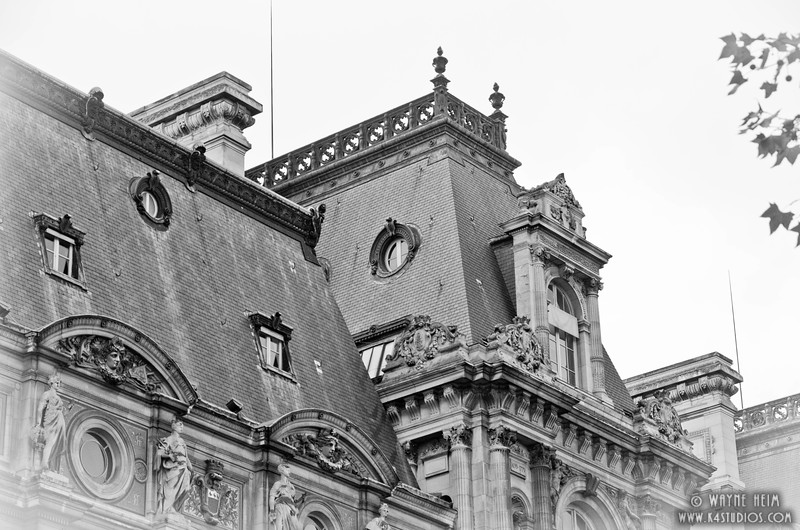 Ornate Roof in Paris.    Black and White  Photography by Wayne Heim