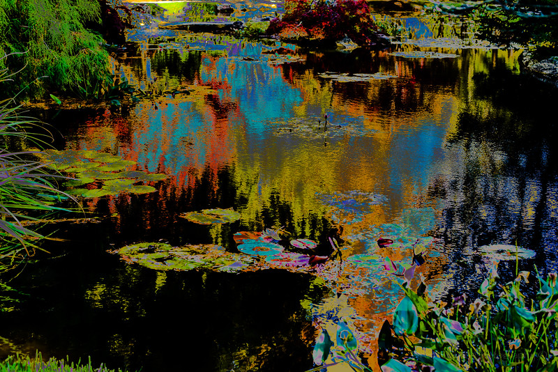 20141107-USA_8800.jpg